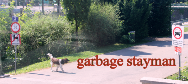קונבנציית Garbage Stayman
