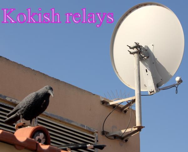 Ask Sally: קונבנציית Kokish relays