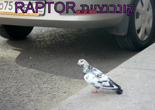 קונבנציית Raptor