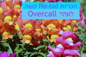 Ask Sally: הכרזת Re-bid קשה לאחר Overcall