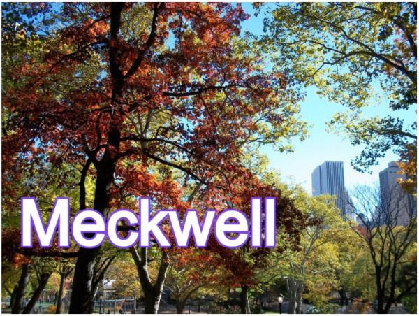 קונבנציית Meckwell